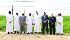 Economy Minister visits green fodder cultivation project