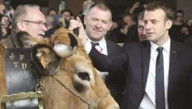 French President Emmanuel Macron (right) touches an Aubrac cow as he visits the 55th International A