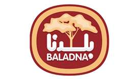 Baladna appoints Saba al-Fadala as PR, communications director