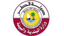 Ministry of Municipality and Environment (MME)