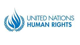 The UN Office of the High Commissioner for Human Rights (OHCHR) carried out a fact-finding mission e