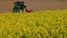 A farmer drives his tractor behind a rapeseed field in Estourmel near Cambrai