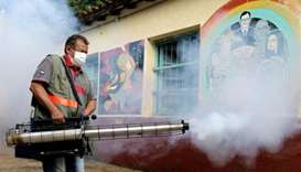 A federal health worker takes part in fumigation to prevent the proliferation of mosquitos that tran
