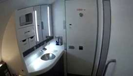Former British PM Cameron's bodyguard forgets loaded gun in plane toilet