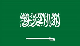 Saudi executions exceed 100 this year