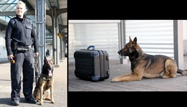 How dogs are fighting terrorism in Germany