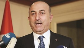 Cavusoglu: They (the German authorities) don't want Turkey to campaign (in Germany), they are workin