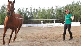 Female Saudi horse trainer sees signs of hope