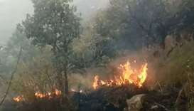 Indian forest fires kill 9 hikers, injure 18 others