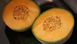 Australia exported 'listeria-tainted melons to 9 countries'
