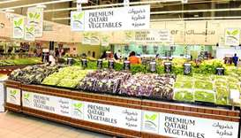 540 tonnes of local vegetables sold in Sept