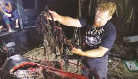 Dead whale had 40kg of plastic in stomach