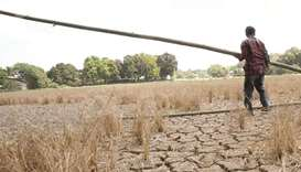 Agency expects 51 provinces to suffer drought