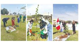 Ambassadors take part in tree planting initiative