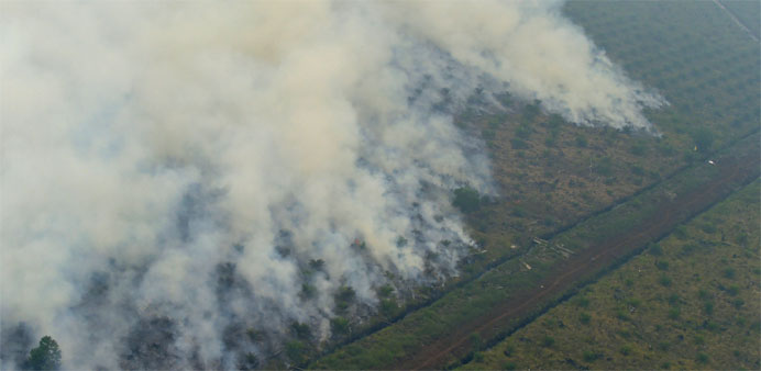 Indonesian companies blamed for farm and plantation fires spewing unhealthy levels of air pollution