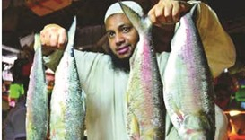 Short supply puts hilsa out of reach for many