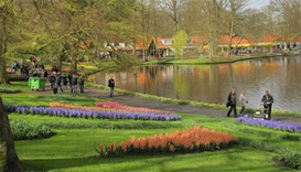 A general view of the world's largest bulb garden of Keukenhof in Lisse