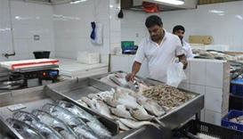 Shortage of fish expected to continue for few more days