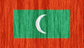 Maldives frees journalists arrested over protest