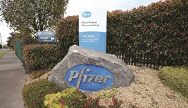 Pfizer deal collapse injects new life into pharma stocks