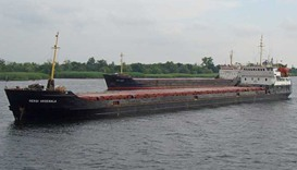 Cargo ship with 12 crew sinks in Black Sea