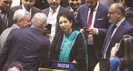 Pakistan elected to two key UN bodies