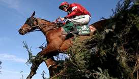 Tiger Roll in action during the last year's Grand National. (Reuters)
