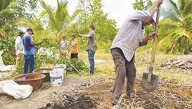 Central American migrants work in a compost to create organic material to be used as fertiliser for