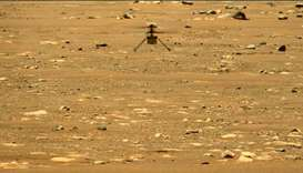 NASA's Mars Perseverance rover acquired this image using its left Mastcam-Z camera.