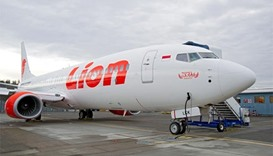 Lion Air crash families to sue Boeing after chief's apology