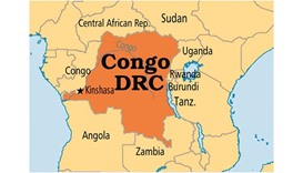 16 villagers hacked to death in eastern DR Congo
