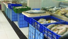 Umm Slal fish retailers consider relocating to other areas