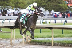 Always Dreaming clinches 143rd Kentucky Derby