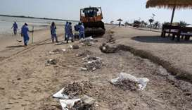 Ministry in cleanup campaign at Al Thakhira beach