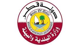 Doha among 4 cities chosen to study sustainable global model