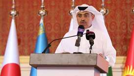 Qatar ready to be 'networking hub' for ACD, says minister