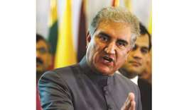 Qureshi urges joint SCO effort to meet challenges
