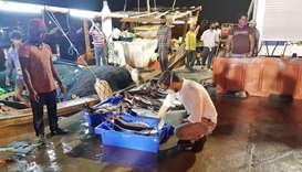 Stringent health control measures at fishing harbours