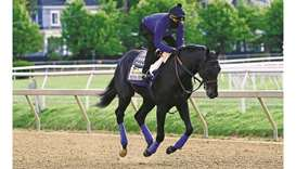 Medina Spirit takes part in a morning work out at Pimlico Race Course in Baltimore yesterday. (USA T