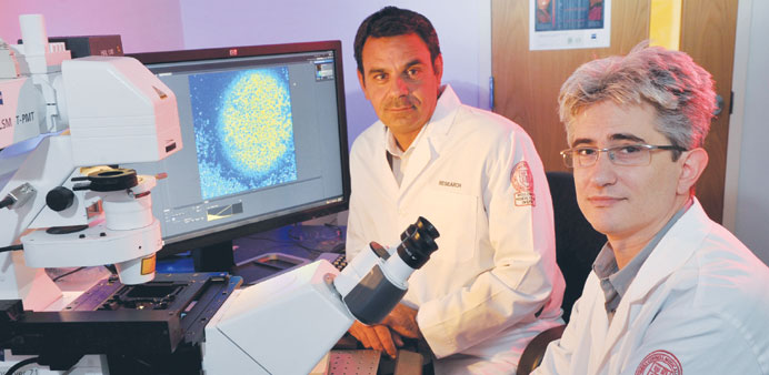 Research success for WCMC-Q scientists