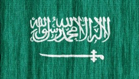 Saudi petition seeks 'full' rights for women