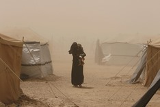 Iraq forces push in Fallujah amid concern over trapped civilians