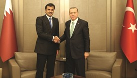 Emir holds talks with Erdogan