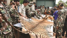Thai police charge 22 with wildlife trafficking