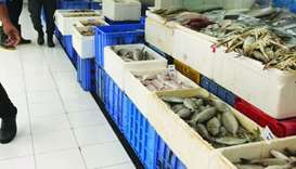 Fish prices remain affordable at wholesale market