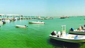 Doha fishing harbour