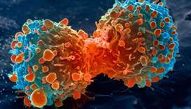 Targeted cancer treatments far outperform traditional methods