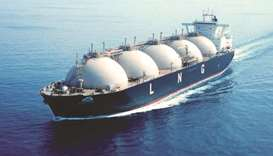 LNG expansion project to boost local economy: QP chief