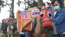 QC delivers aid to rugged areas in Indonesia using horses