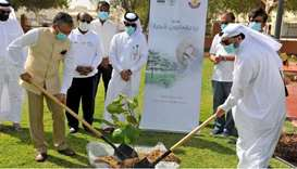 Indian envoy takes part in ICC, MME tree planting event